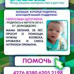 otchet_fonda_shhetochkina